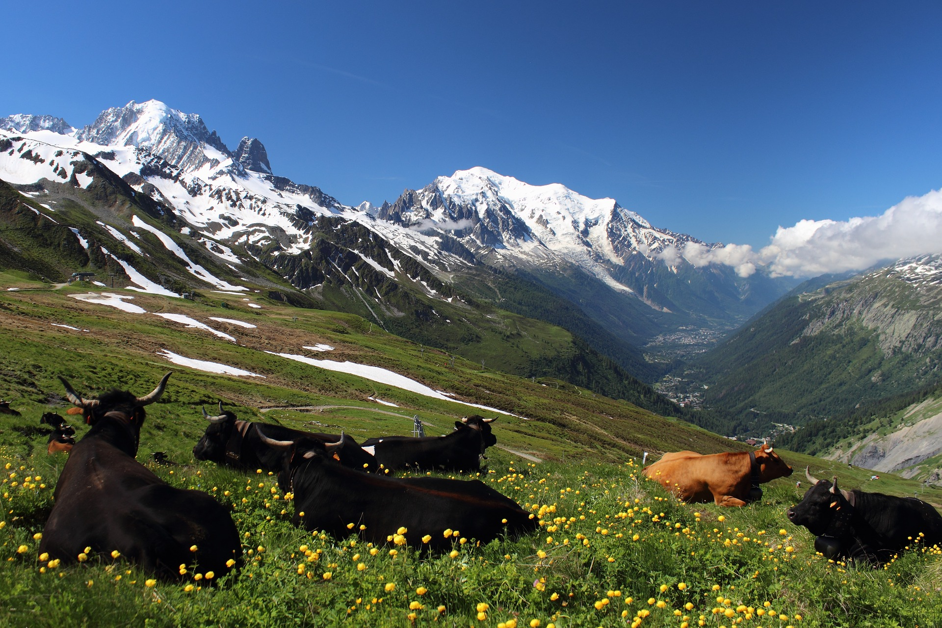 trek-the-haute-route-from-chamonix-to-zermatt