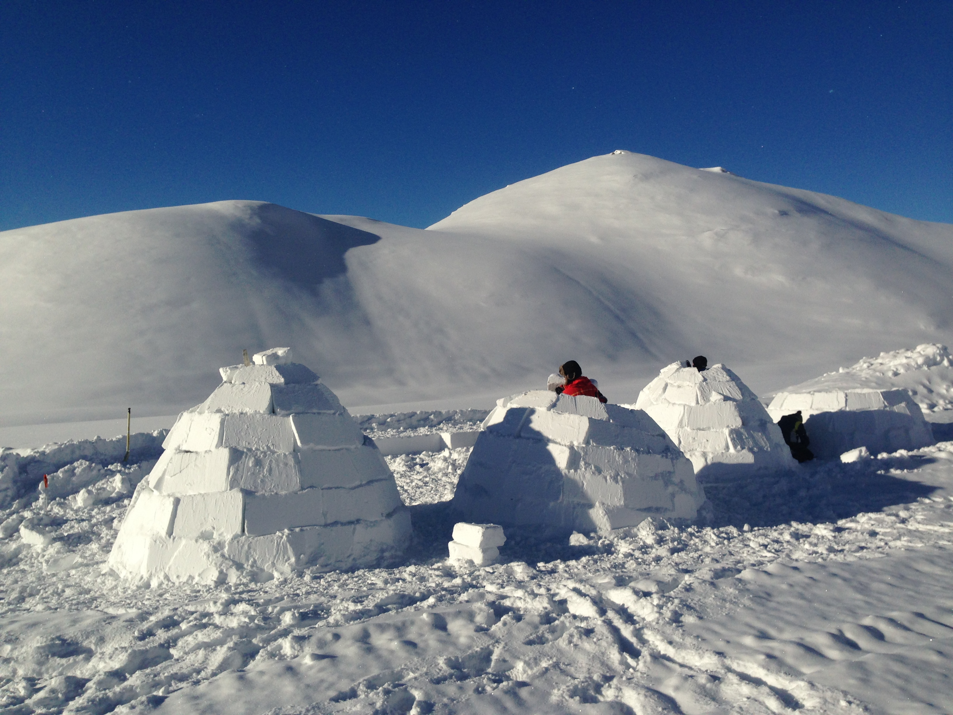 build-your-own-igloo