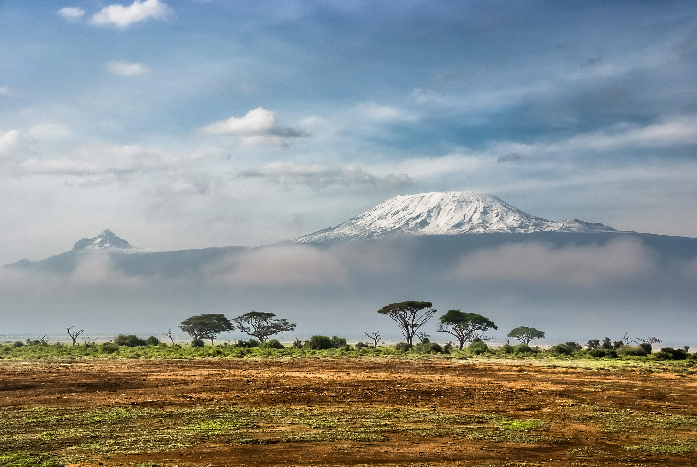 adventures-conquer-mount-kilimanjaro-5895m-via-the-northern-circuit-and-tanzanian-game-safari/